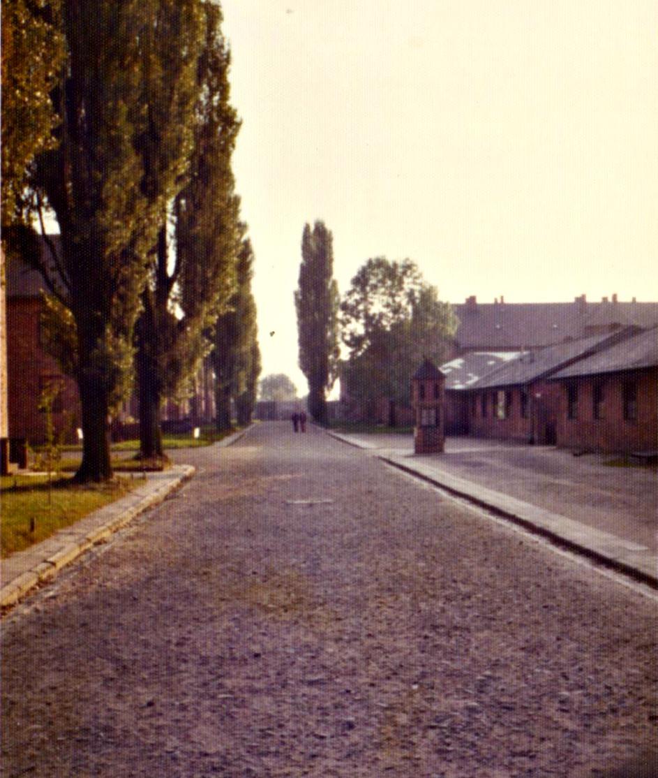 Polónia3